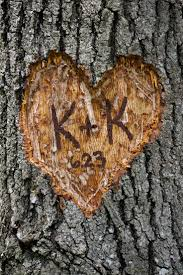 initials carved in tree 17 best bound by a tree images on initials a tree and