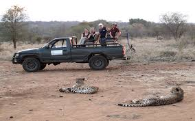 jeep africa service learning in south africa latitude group travel