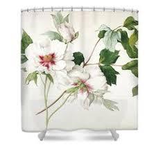 Botanical Shower Curtains The World S Catalog Of Ideas