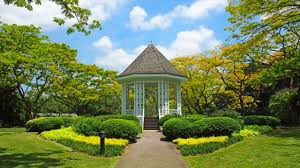 Singapore Botanic Gardens Location Of Singapore Botanic Gardens Interesting Things To