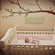 Pink And Green Nursery Decor Brown And Pink Nursery Theme Decorating Ideas For Your Baby S Room