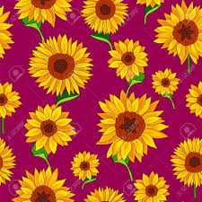 sunflower wrapping paper seamless vector pattern of sunflowers on a purple background