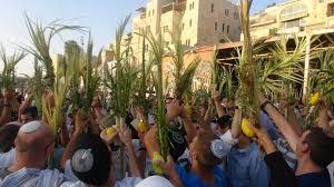 prayers for sukkot prayers at the kotel videoclip sukkot סוכות
