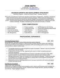 Examples Of Business Resumes Modest Decoration Free Business Resume Template Winsome Ideas 15