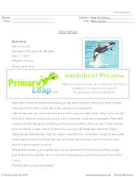 fillable online reading comprehension killer whale primary