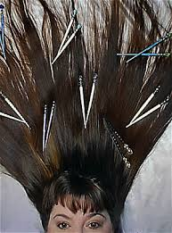 hair sticks hairstick styles gallery fans of longlocks hairsticks show