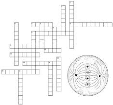 Mitosis And The Cell Cycle Worksheet Mitosis Crossword Teaching Teaching Biology