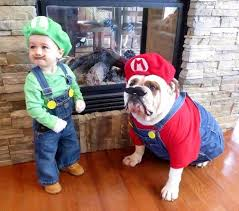 Pet Halloween Costumes See 14 Of The Most Adorable Halloween Pet Costumes Nbc News
