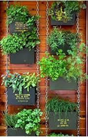 wall mounted herb garden 12 best landscaping images on pinterest garden ideas plants and