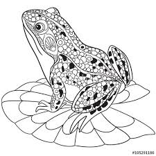 25 best frog coloring pages ideas on pinterest frog template