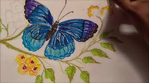 how to draw butterfly using oil pastels youtube