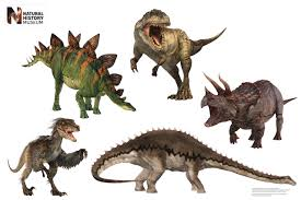 Dinosaur Home Decor by Dinosaur Walljammer Decals Great Decor For Any Home Or Party