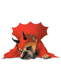 Spirit Halloween Pet Costumes Zelda Devil Pet Costume U2013 Spirit Halloween Costumes Laelanni