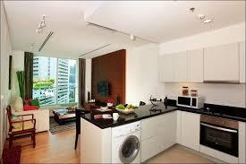 kitchen simple kitchen designs kitchen layout planner indian