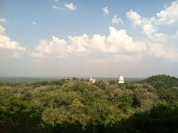 Above The Canopy by Dig Deeper Origins Of The Maya U2013 National Geographic Society Blogs