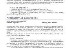 download resume format for professional haadyaooverbayresort com