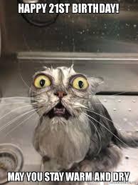 Happy 21 Birthday Meme - happy 21st birthday may you stay warm and dry cat bath make a
