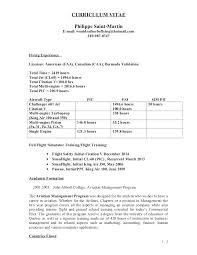 executive summary resume exles aviation management resume sle resumes for customer service