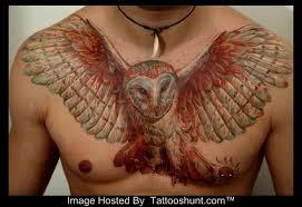 owl in flight search owl