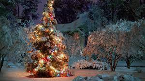 garden christmas trees christmas lights decoration