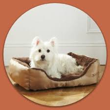 best dog beds for small dogs cheap small dog beds