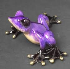 best 25 black frog ideas on frogs tree frogs and are