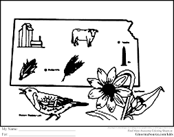kansas jayhawks coloring pages coloring pages ideas u0026 reviews