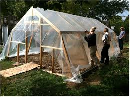backyard greenhouse kits lowes home outdoor decoration