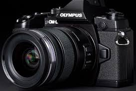 camera brands best camera brands for the users luxurious list of top ten