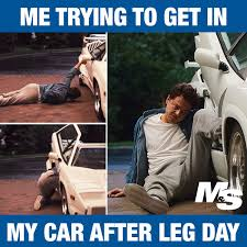 Workout Meme - 13 hilarious after leg day memes for people who really train