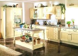 ash kitchen cabinets ash kitchens cabinets and doors kitchen hbe op14 106 transitional