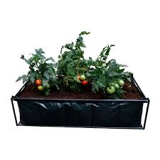 viagrow tomato planter raised bed garden with coir coco growing