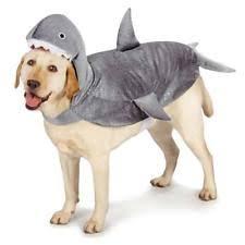 White Dog Halloween Costume Dog Halloween Costume Shark Costumes Pet Casual Canine Xs Ebay