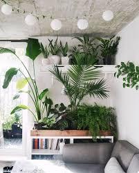 home interior garden best 25 interior garden ideas on atrium atrium