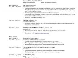 beautiful design ideas information technology resume examples 8