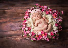 newborn photographers buffalo newborn photographer s corner photography