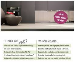 Facts About The Cabinet 5 Fun Facts About Fenix Ntm Matte Surfaces For Interior Design