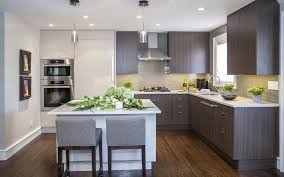 Contemporary Spice Racks Full Length Pantry Kitchen Contemporary With Window Contemporary