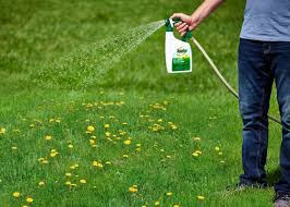 how to kill weeds without killing your lawn garden club