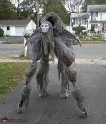 Crazy Halloween Costume 5 Meticulously Crazy Diy Halloween Costumes Diy