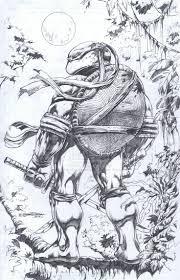 best 25 ninja turtles cartoon ideas on pinterest ninja turtles