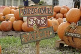annual pumpkin patch miami shores presbyterian church