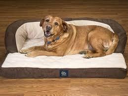 pillow top dog bed serta orthopedic dog bed best orthopedic dog bed reviews serta