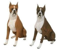 boxer dog uncontrollable head shaking best 20 boxer dog names ideas on pinterest boxer boxer puppies