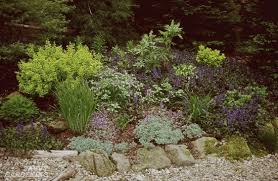 Types Of Community Gardens - digging into mulches types of landscape mulch for your garden