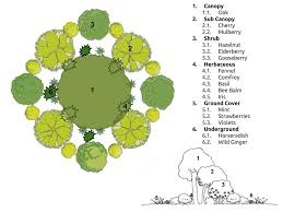 new to permaculture but a little confused forest garden forum
