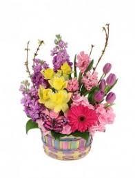 florist ocala fl ocala florist ocala fl flower shop leci s bouquet