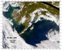 Gulf Of Alaska Map by Phytoplankton In The Gulf Of Alaska Natural Hazards