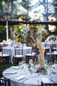 branch centerpieces reception décor photos centerpieces with branches succulents
