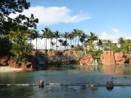 Atlantis Bahamas by Daily Photos U0026 Frugal Travel Tips Paradise Island